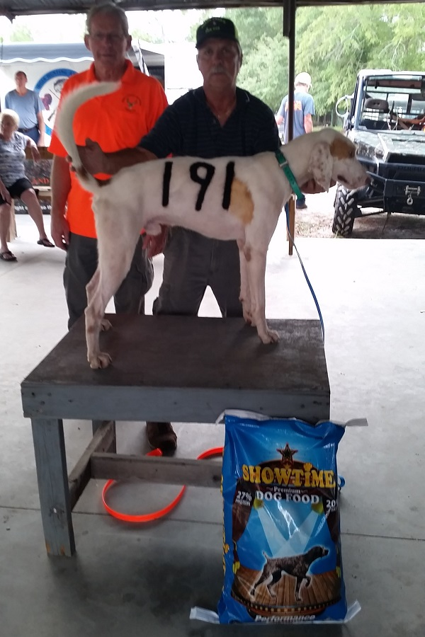 Best in Show – Bobby can Fly owned by Bobby Parker