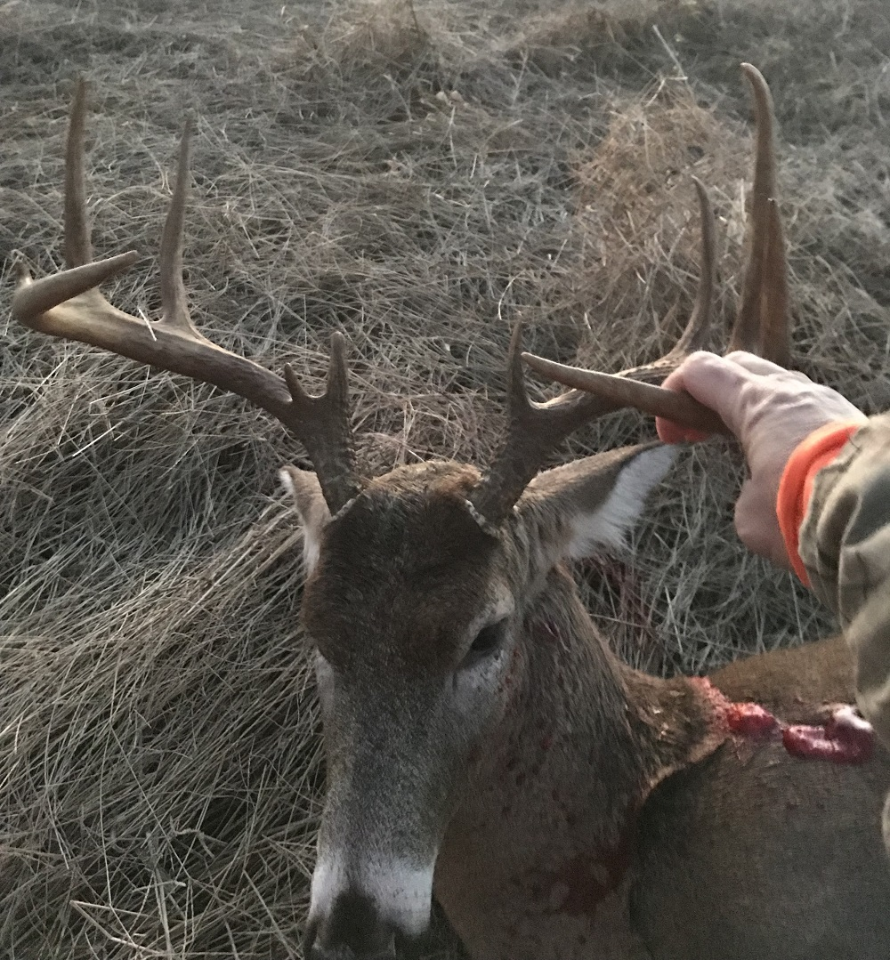 Kim Fiveash killed this trophy buck in Turner County